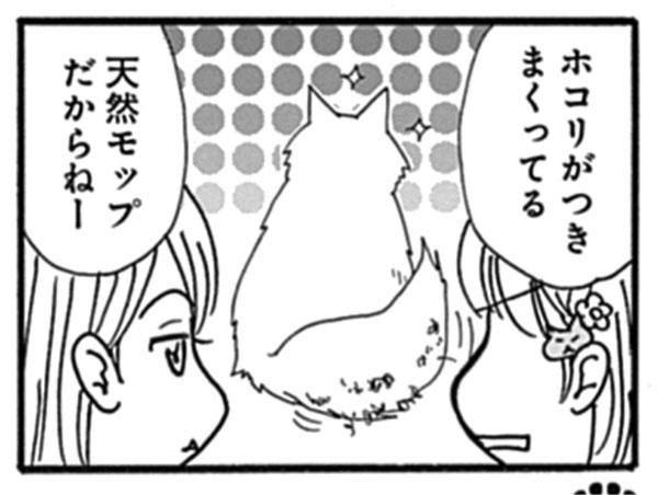 猫漫画コマ_しっぽと教科書2